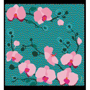 Tissu microfibre pour lunettes - Belle Vue