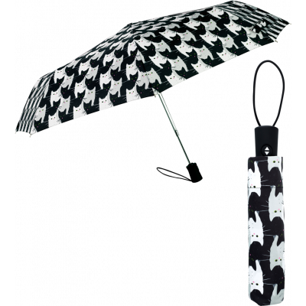 Regenschirm - Parapli