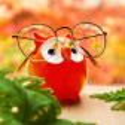 Brillenhalter - Owl Dunkelblau