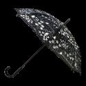 Umbrella - Rainbeau Dahlia