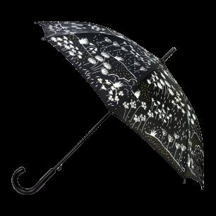 Umbrella - Rainbeau - Black Board