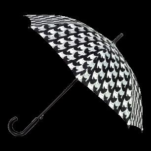Regenschirm - Rainbeau - Cha Cha Cha