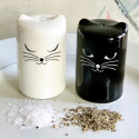 Salt and pepper shaker - Chalt et Cheper