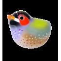 Uccello calamita per graffette - Piu Piu Diamante di Gould