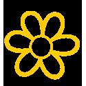 A Fleur d'Œuf - Moule à œuf