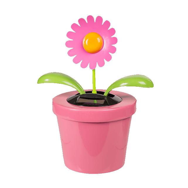 XXL Flower - Flip flap solaire
