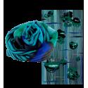 Scarf - Balade Cactus