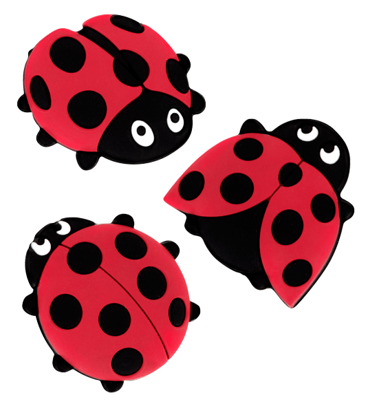 Lady bird - Set of 3 magnets