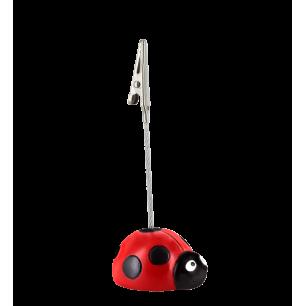 Portafoto - Zoome clip - Coccinella