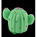 Gloss - Cactus Vanille
