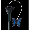 Papillon solaire Bleu