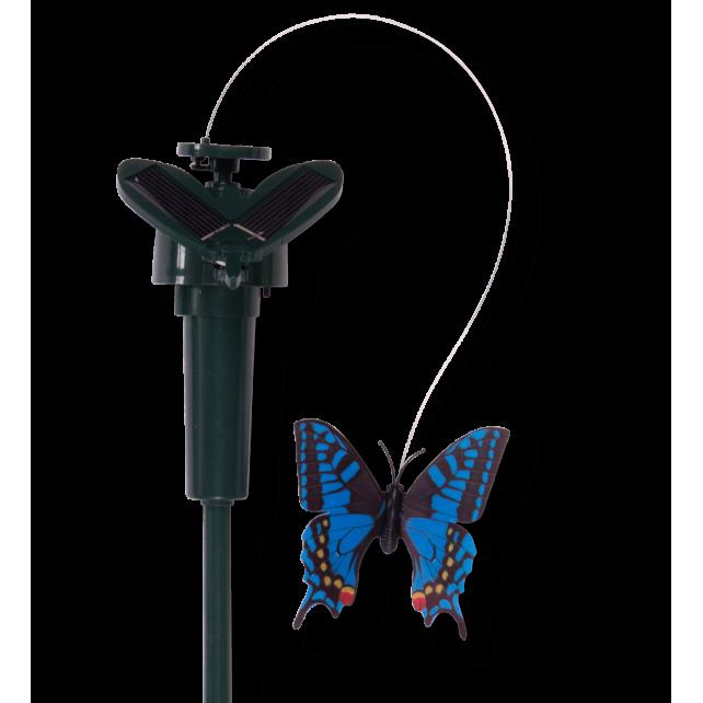 Flatternde Schmetterling