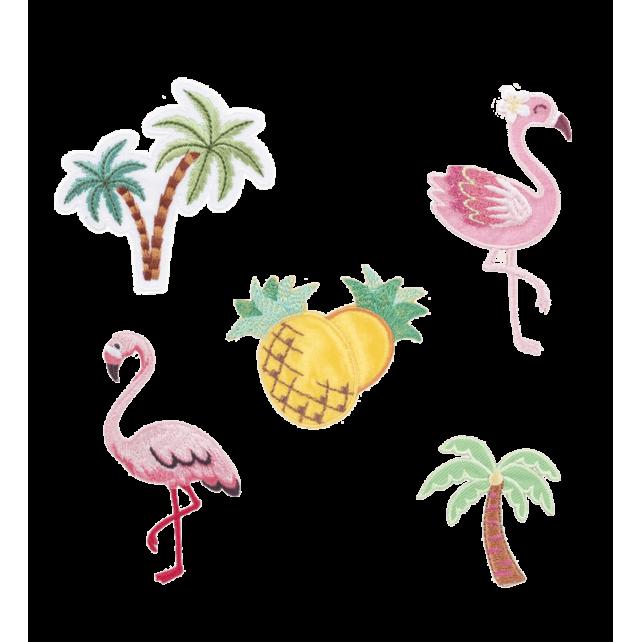 Set von 5 Aufklebern für Kleidung Tropical