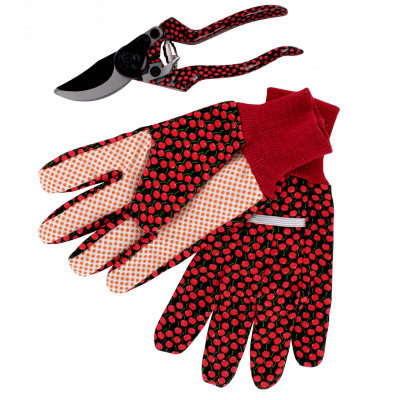 Garden gloves and shears - Back to Gardening