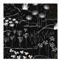 Microfibre cloth for glasses - Belle Vue Coquelicots