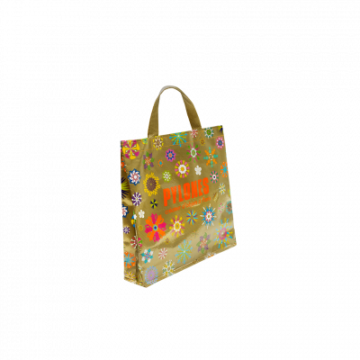 Shopping bag Pylones