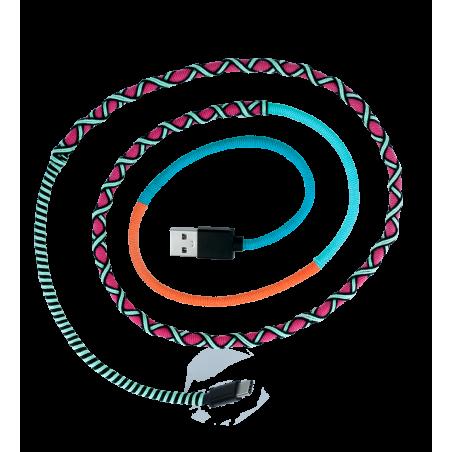 Câble USB Type C - Salsa