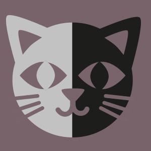 Chat Noir et Gris