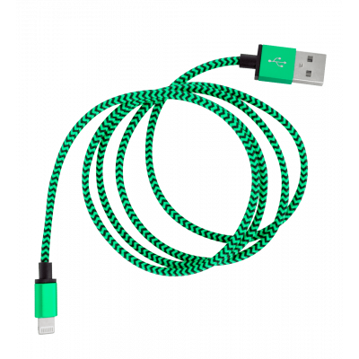 iPhone Cable - Vintage Green