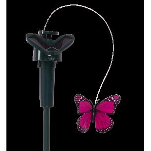 Papillon solaire Rose