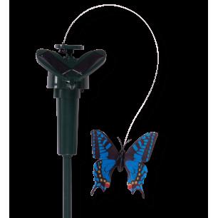 Solar butterfly Blue